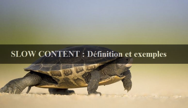 Slow content définition, slow content exemple, slow content et snacking content, slow blogging