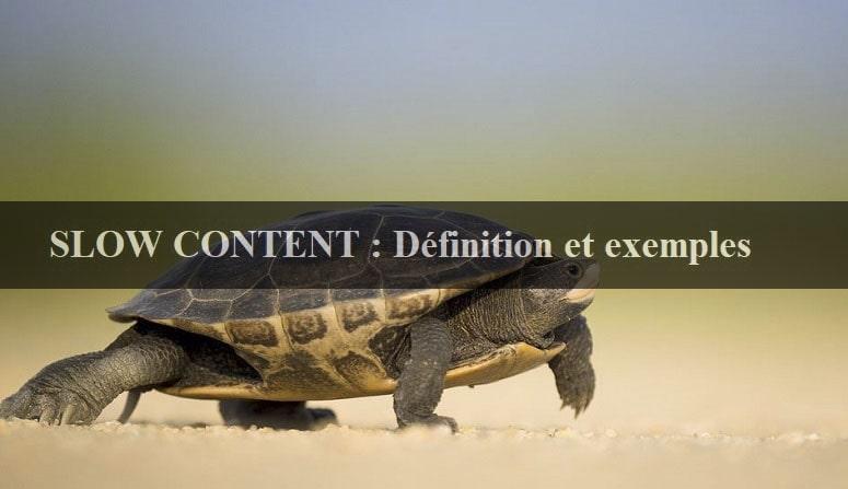 Slow content définition, slow content exemple, slow content et snacking content, slow blogging